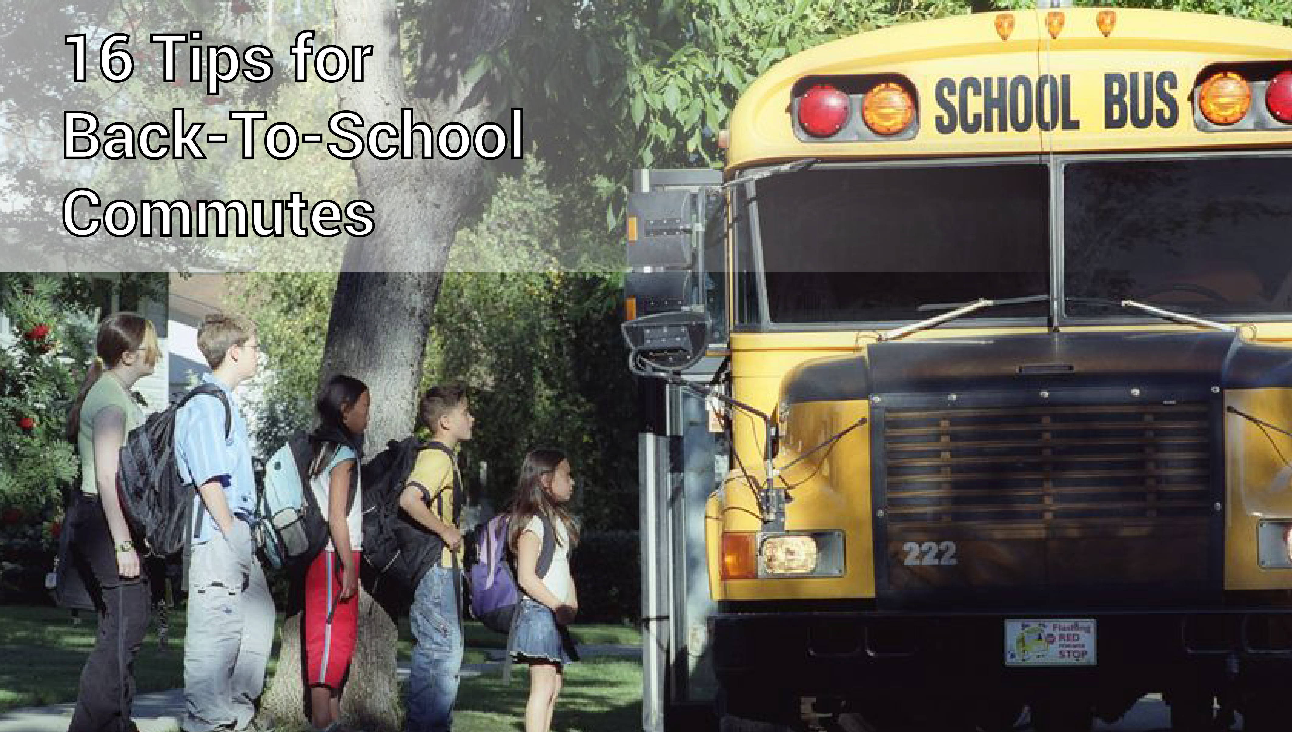 Bus Safety Rochester Buffalo Erie Syracuse Albany